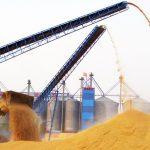 Пшеница на элеваторе