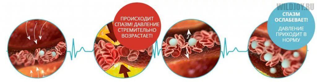 GIPEROLEKT - средство от гипертонии