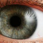 Радуги в глазах