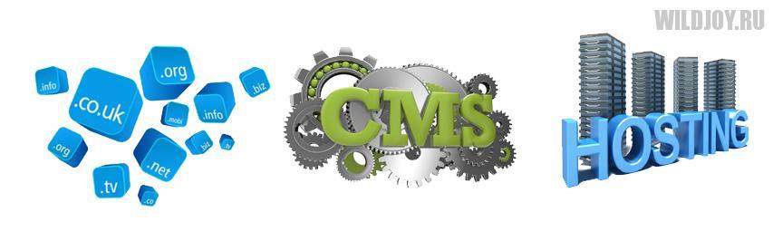 2 этап: Выбор cms, домена и хостинга