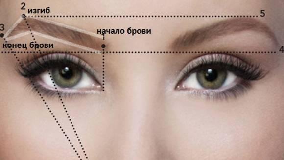 Особенности моделирования бровей